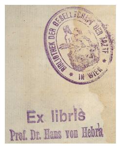Hebra2