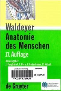 wald17